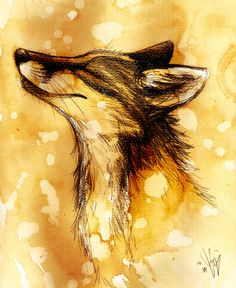 Basking Fox Random Fox by Culpeo-Fox on DeviantArt Art And Illustration, Animal Drawings, Art Drawings, Fuchs Baby, Fantastic Fox, Fox Drawing, Fox Tattoo, Fox Art, Furry Art