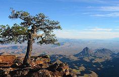 Big Bend National Park, south Texas east of El Paso.