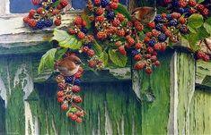 By Andrew Hutchinson Autumn Tale, Hyperrealism, Realism Art, Bird Drawings, Wildlife Art, Bird Art, Wildlife Photography, Art Forms, Light In The Dark