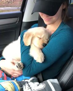 Watch funny and cute dogs and puppies as they are the most lovable pets in the world. Cute Little Animals, Cute Funny Animals, Funny Dogs, Cute Cats, Adorable Dogs, Cute Animal Videos, Cute Animal Pictures, Cute Dogs And Puppies, I Love Dogs