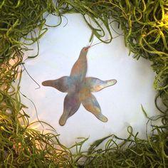 sea star ornament