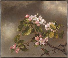 Hummingbird and Apple Blossoms