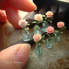 Miniature doll house in a cage by Natalia Volchkova - streetart Miniature Plants, Miniature Dolls, Polymer Clay Miniatures, Dollhouse Miniatures, Dollhouse Dolls, Modern Dollhouse, Poupées Our Generation, Flowers For Mom, Mini Craft