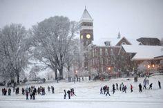 Winter at Clemson - Clemson World - Clemson University Clemson University Football, Clemson Tiger Paw, Alma Mater, College Life, South Carolina, Great Places, World, Snow Days, Fan