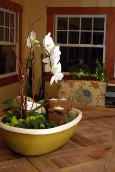 A vintage wash-bin becomes a vibrant orchid display