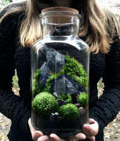Eine großes Glas beherbergt eine Miniaturlandschaft, bestehend aus mehreren Sorten von live Moos und Schiefer Rock Berge. Dieses Terrarium ist leicht zu pflegen und erfordert nur minimale Bewässerung und indirektes Licht. Jedes Stück kommt mit kompletten Pflegehinweise und kostenlose