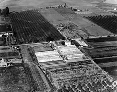 1927-Lynwood, California Aerial View Lynwood California, Miles City, South Gate, Los Angeles Area, Los Angeles County, Old City, The Ranch, Back In The Day, Aerial View