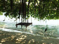 °unserer Meeres-Schaukel °our sea swing Delphine, Am Meer, Outdoor Furniture, Outdoor Decor, Park, Rainy Season, Snorkeling, Maldives, Sunrise