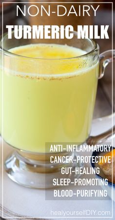 Non-Dairy Turmeric Milk | www.healyourselfDIY.com