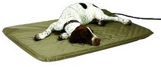 KandH Pet Products Lectro-Soft Small Tan Outdoor Heated Pet Bed * Remarkable product available now.(This is an affiliate link and I receive a commission for the sales) : Dog beds