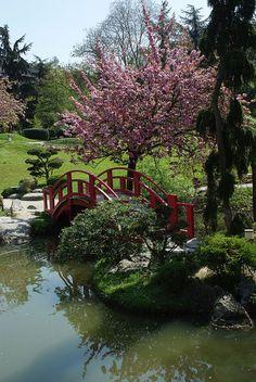 Le jardin japonais de Toulouse, Midi-Pyrenees, France  www.gajolles.com