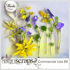 Commercial Use 69::28/01 - Wonderful Wednesday::Memory Scraps {CU}