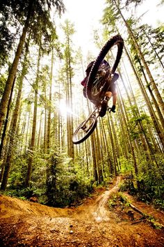 #trailriding #biking #photography #pictures