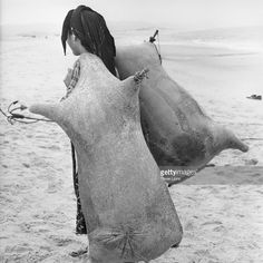 A girl carrying two animal skins full of water in the Portuguese fishing village of Nazare.