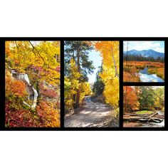 """Fallscapes -Digital Fall Scenes~ Panel 24"""" x 44"""" Cotton Fabric, Red Rooster Fast Shipping F659"""