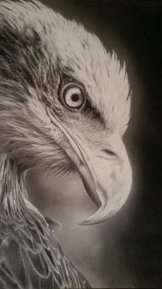 A3 Custom Photo Realistic Commission Pencil Drawing