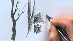 Improve your Trees in Pencil One - Part One