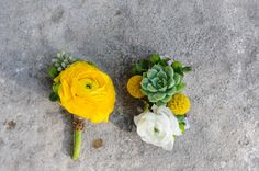 yellow + succulents