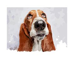 Those sweet basset eyes! Hound Puppies, Basset Hound Puppy, Chien Basset, Palm Frond Art, Art Assignments, Dog Coloring Page, Dog Heaven, Silly Dogs, Cartoon Dog