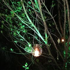 Haunting candle illuminating our path in #Mayakoba. #VCUntouched