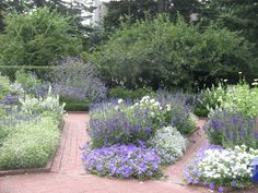 The Designer's Muse: A Visit to Make Mom Happy: The New York Botanical Garden