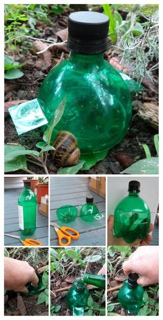 slug trap - i perpetually knock mine over. this should help me out with that problem