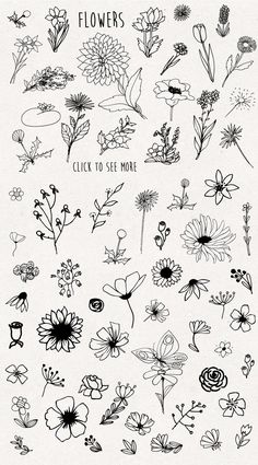 f l o w e r s- flores flowers tatuajes tatuajes en papel delicados de Bullet Journal Aesthetic, Bullet Journal Art, Bullet Journal Ideas Pages, Bullet Journal Inspiration, Doodle Drawings, Easy Drawings, Tattoo Drawings, Easy Flower Drawings, Easy To Draw Flowers