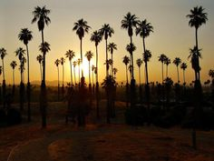 Southern California is a stunning place to live and visit. Check out these 15 awesome views that are absolutely magical. Riverside City, Riverside California, California Sunset, California Travel, Southern California, Best Credit Cards, Best Sunset, Summer Nights, Beautiful Places