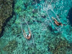 It's worth to paddle to an ocean with crystal clear waters and see stunning beauty of the undersea. How about transparent kayaks? Adventure Awaits, Adventure Travel, Kayaks, Into The Fire, Journey, Wakeboarding, Travel And Leisure, Adventure Is Out There, Transparent