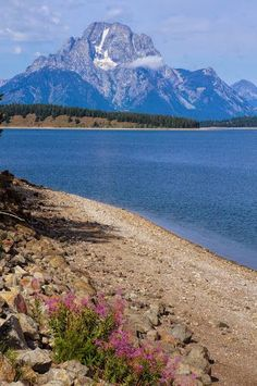 Jackson Lake. Grand Teton National Park, Wyoming, USA.