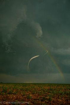 "My kids and I drove through this storm...A small tornado ""ropes out"" over a field in Hansford County, Texas on June 29, 1999.  The storm that produced this tornado was a cyclic supercell that spawned several tornadoes as it moved from southeastern Colorado into the Oklahoma and Texas panhandles."