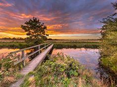 Natuur in Drenthe (63 pieces)