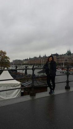 Near  Vasa Museum