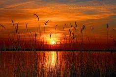 Die schönsten Sonnenuntergänge an der Nordsee... #Strand #Baden #Beach #Sommer #Sonne #Sun #Summer #Meer ©Lars Koch - Fotolia