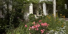 Enjoy the amazing stories about Our Garden. Each tree has their own special story. Tasting Room, Wine Tasting, Big Family, Bird Watching, Wine Recipes, This Is Us, Van, Amazing, Garden