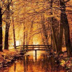 Осенний интенсив