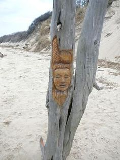 Voodoo Tree - Higbee Beach, Cape May, NJ - This beach was used hundreds of years ago as a Native American encampment  and has many layers of residual and active energies. People report seeing a phantom black dog as well as a cloaked figure wandering around. The original owner, Mr. Higbee, is also said to make his presence known.