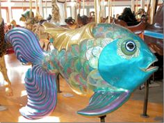 This gorgeous, iridescent fish is wonderful and quite hilarious.                                                                                                                                                     More