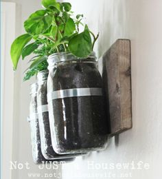 Herb Garden Planter made out of jars, to hang on the wall! Great idea!