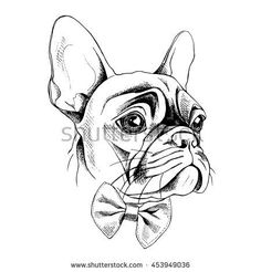 Portrait of French Bulldog in profile with a tie. Vector illustration.