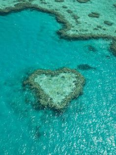 Heart Reef, in the Great Barrier Reef of the Whitsunday Islands, is a composition of coral that has naturally formed into the shape of a heart. Located in Hardy Reef, Heart Reef must be viewed from the air as the area is protected and snorkelers and scuba divers are not allowed to enter. #australia #travel #nature Man I wish I could go there!!!