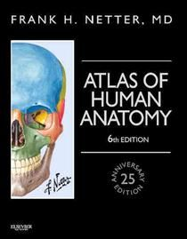 Atlas Of Human Anatomy Netter Basic Science Af Frank H Bog