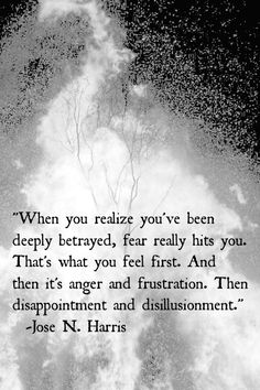 when you realize you've been deeply betrayed, fear really hits you. that's what you feel first. and then it's anger and frustration. then disappointment and disilluionment