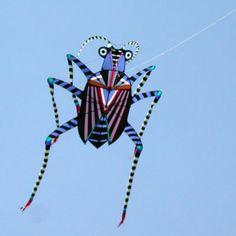 Creative Kites Festival