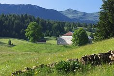A typical village in the Jura Mountains : Bellecombe village, in the south of the Jura Mountains