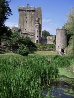 Blarney Castle in Ireland.I want to go see this place one day.Please check out my website thanks. www.photopix.co.nz
