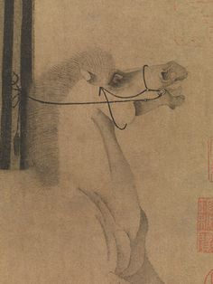 Night-Shining White (detail). Tang dynasty (618–907). China. Handscroll; ink on paper;