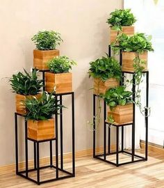 60 beautiful hanging plants ideas for home decor 51 Design And Decoration – Wohnaccessoires Easy House Plants, House Plants Decor, Home Decor With Plants, Home Plants, Hanging Plants, Indoor Plants, Indoor Balcony, Indoor Herbs, Indoor Gardening