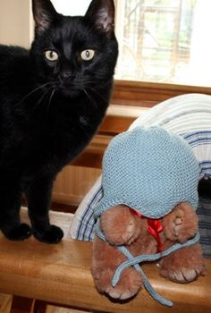 Nordic Yarns and Design since 1928 Knitting Yarn, Knit Crochet, Crochet Patterns, Cats, Animals, Gatos, Animales, Animaux, Crochet Pattern