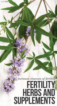 6 fertility supplements that can boost fertility.